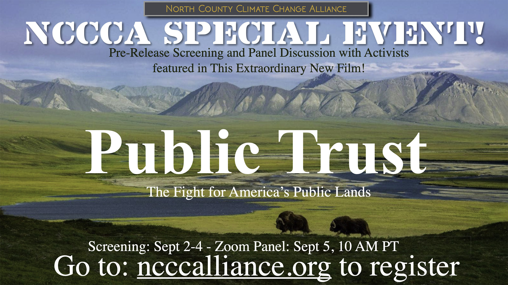 Public Trust Flyer